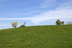 Springtime landscape Royalty Free Stock Photos