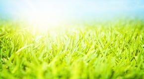 Free Springtime Landscape Stock Photos - 29956633