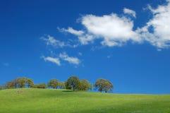Springtime landscape Royalty Free Stock Images