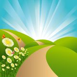 Springtime landscape green fields blue sky flowers Royalty Free Stock Photography