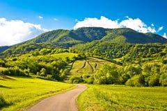 Free Springtime Landscape On Plesivica Hills Stock Photos - 78757033