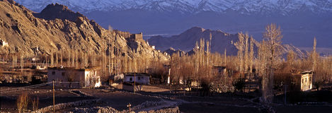 Springtime in Leh, Ladakh - panorama Stock Images
