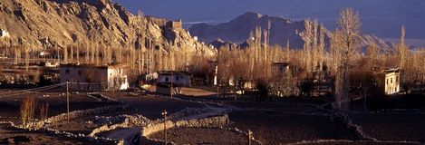 Springtime in Leh, Ladakh - panorama-2 Stock Images