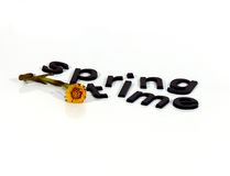 Springtime Letters. A flower and leter forming the word springtime Royalty Free Stock Images