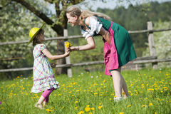 Springtime Royalty Free Stock Images