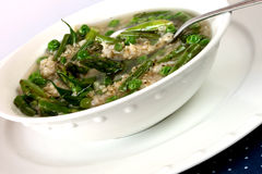 Springtime Minestrone. Soup with green beans, peas, and asparagus with brown rice cooked in chicken broth Royalty Free Stock Photos