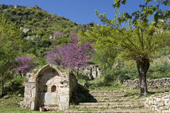 Springtime at Mystras - Peloponnese Royalty Free Stock Photo