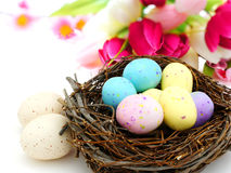 Springtime nest. Springtime Easter nest with colorful spotted eggs over white royalty free stock photos