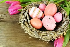 Springtime nest and flowers Stock Images