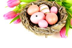 Springtime nest and flowers Royalty Free Stock Photos