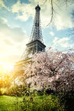 Springtime in Paris. Eiffel tower. (toned image Royalty Free Stock Images