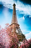 Springtime in Paris. Eiffel tower. (toned image Royalty Free Stock Image