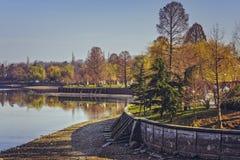 Springtime in the park Stock Image