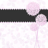 Springtime Pink Purple Hydrangea Flower Greeting C. Ard Background Stock Image