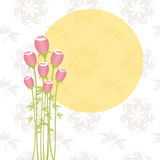 Springtime pink rose on seamless pattern Royalty Free Stock Photo