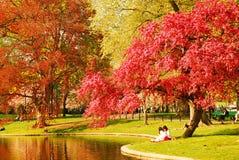 Springtime in the Publik Garden royalty free stock photos
