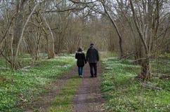 Springtime recreation walk Royalty Free Stock Images