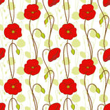 Springtime red poppy flower seamless pattern. Background Stock Photography