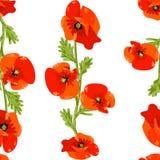 Springtime red poppy flower seamless pattern background vector eps 10. Springtime red poppy flower seamless pattern background vector stock illustration