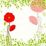 Springtime Red Poppy on Green Background Stock Photo