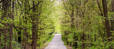 Springtime road panorama in Indiana Stock Photography