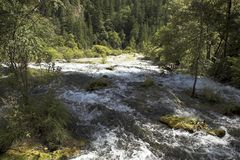 Shoals with rushing water stock image