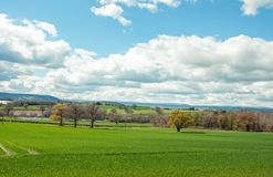 Springtime scenery in the English countryside. A beautiful scene around the English countryside of the United Kingdom Royalty Free Stock Photo