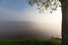 The Springtime Shoreline of a Foggy Mountain Lake at Sunrise Royalty Free Stock Photos