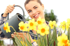Springtime, smiling woman in garden watering flowers Royalty Free Stock Image