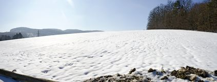 Springtime snow on a pasture Stock Photos