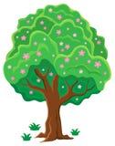 Springtime tree topic image 2 Stock Photos
