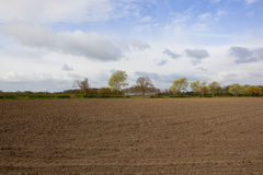 Springtime trees and cultivated field Stock Images