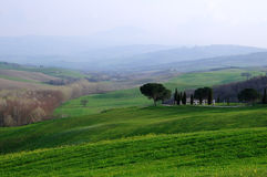 Springtime in Tuscany Royalty Free Stock Image