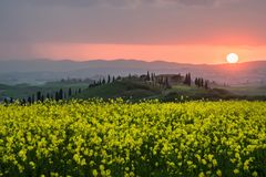 Springtime in Tuscany at sunset stock photos