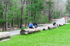 Springtime Vacationers Sit on Logs in the Cades Cove Campground in the Great Smoky Mountains National Park. Horizontal shot of Vacationers in the Smoky Mountains Stock Photo