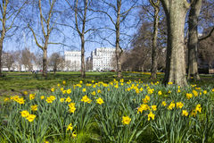 Springtime View of Green Park in London Royalty Free Stock Photos