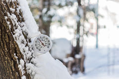 Springtime will come. Round analog thermometer mounted to a tree outside displays mild winter temperatures. Round analog thermometer mounted on a tree outside stock images