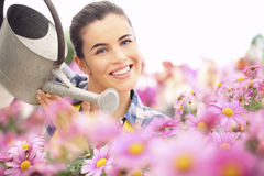 Springtime woman smiling in garden watering daisies flowers Royalty Free Stock Images