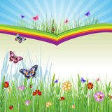 Springtimebakgrund Royaltyfri Fotografi
