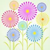 Springtimeblommor Royaltyfria Foton