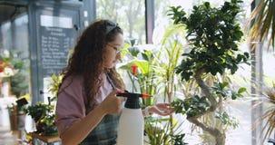 sprinking有水和微笑的花店年轻女人的工作者绿色植物 股票录像