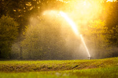 Sprinkle. Beautiful landscape with sunset - copy- Sprinkle in the park Royalty Free Stock Images
