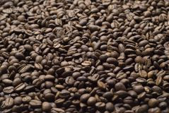 Sprinkle of coffee beans Stock Photo