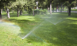 Sprinkle water. On green grass Royalty Free Stock Photo