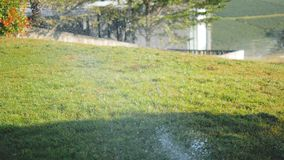 Sprinkle water spray on the grass stock video footage