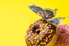Sprinkled Pink and chokolate Donut. Frosted sprinkled donut on yellow background. stock photo