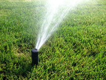 Sprinkler. In action on the lawn royalty free stock photography