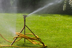 Sprinkler. A sprinkler for a meadow Royalty Free Stock Image