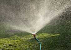 Sprinkler Royalty Free Stock Photo