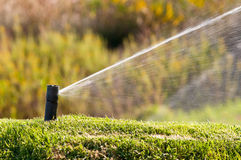 Sprinkler. Watering a lawn during a sunny day Royalty Free Stock Photos